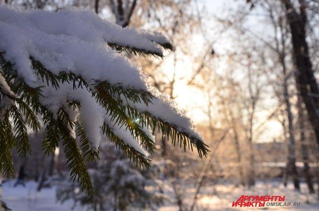 Погода в петропавловске-камчатском на декабрь