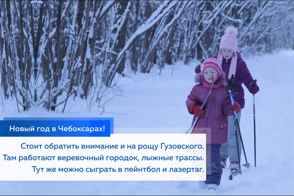 Стоит обратить внимание и на рощу Гузовского. Там работают веревочный городок, лыжные трассы. Тут же можно сыграть в пейнтбол и лазертаг.