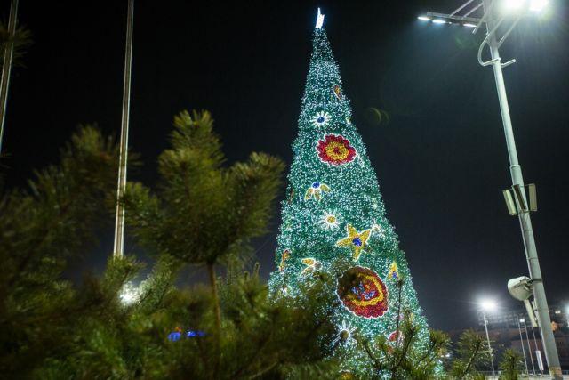 Проблема незаконных рубок в Приморье особенно обостряется под Новый год.