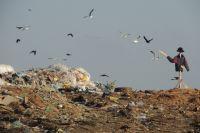 Захоронение отходов будет обходиться гораздо дороже.