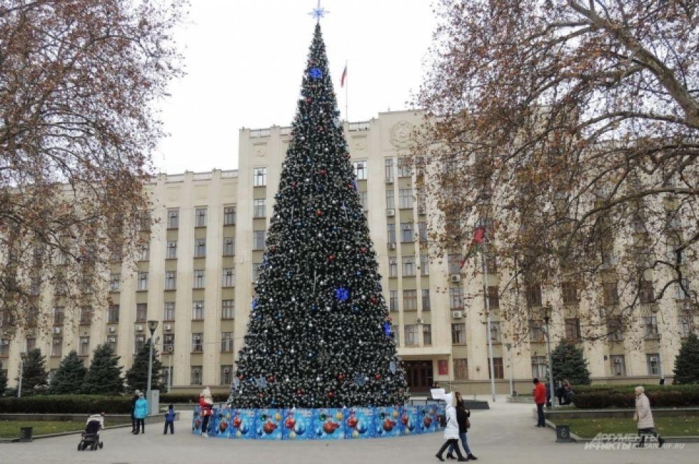 Елка возле здания администрации Краснодарского края.