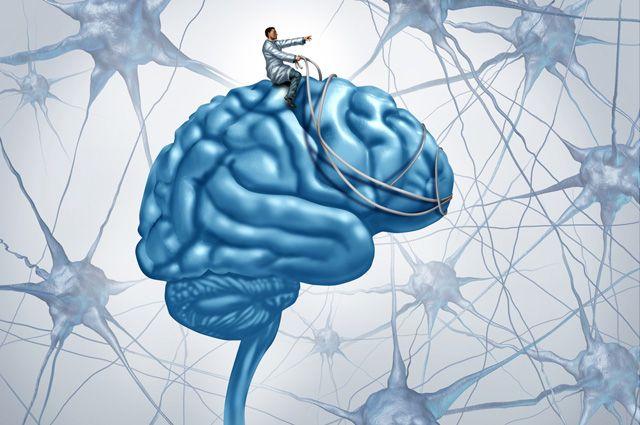 Действительно ли алкоголь нарушает работу мозга?