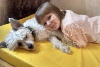 Даже те, у кого дома есть собака, могут заблуждаться относительно поведения своего питомца.