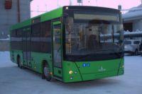 """Автобусц бцдцт следоватьпо новому маршруту, чтобы заезжать на жилмассив """"Северная корона""""."""