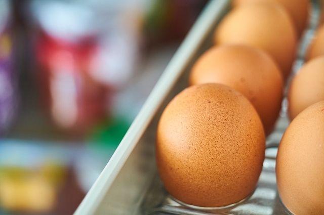 Вновогодние праздники граждане Хакасии смогут плакаться наподозрительные продукты