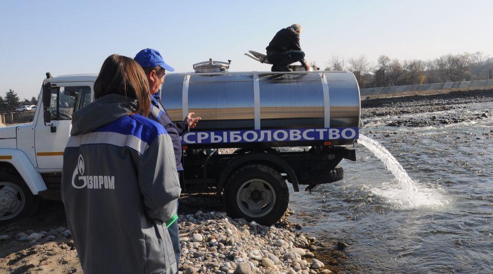 В горные реки Северо-Кавказского региона выпустили более 7500 мальков каспийского лосося. Акция позволила повысить разнообразие уникальных водных биоресурсов Северного Кавказа и расширить среду обитания лососевых рыб.
