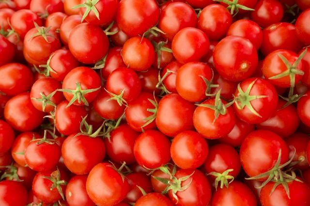 Вморском порту Петербурга задержали помидоры с небезопасными личинками