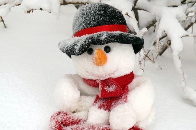 Снеговик слепили неизвестные