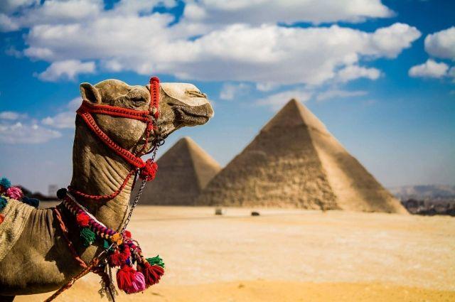 Украинцев предостерегли от поездок в Египет