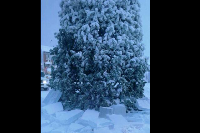 В Салехарде из-за вандалов обесточили от электричества новогоднюю ёлку
