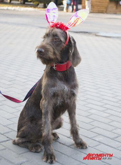 Участник парада в костюме Нюши.