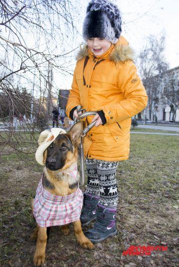 Немецкая овчарка Белль в костюме «Дикий запад».