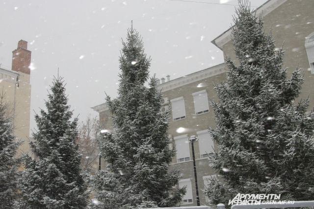 ВПетербурге наРождество ожидаются снег иметель