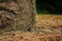 Под Тюменью у частника сгорело 3 тонны сена