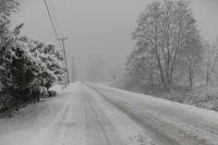 В Омской области ожидается сильный ветер и снегопад.