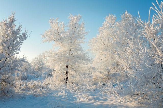 На выходные в Кемеровскую область придут морозы.