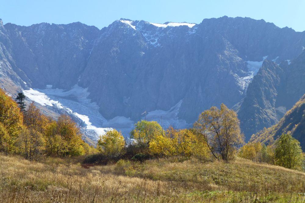 В Красную книгу России занесено 55 видов растений, произрастающих в заповеднике.
