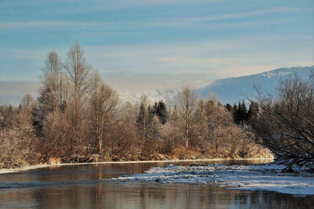 Накопление сведений о ландшафте, животном и растительном мире Вишерского края заставляло задумываться о необходимости сохранения этой территории.