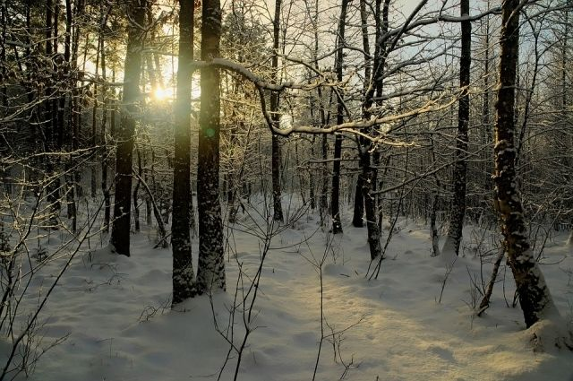 ВТатарстане похолодает до31 градуса мороза