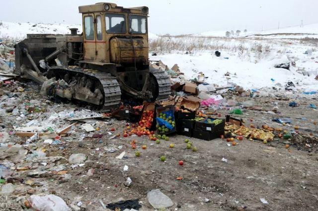 Продукция из Польши запрещена ко ввозу на территорию России.
