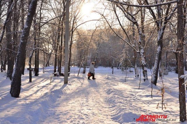 Какая будет погода в Омске во второй половине января?