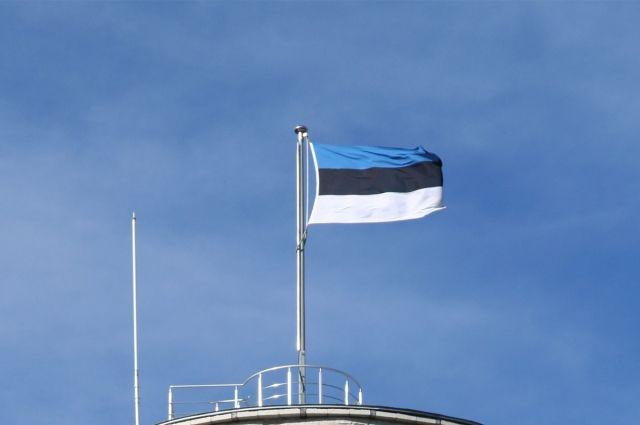 Эстония закупила девять беспилотников для охраны границы сРоссией
