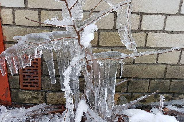 Лед на улицах становится причиной роста обращений в травмпункт.