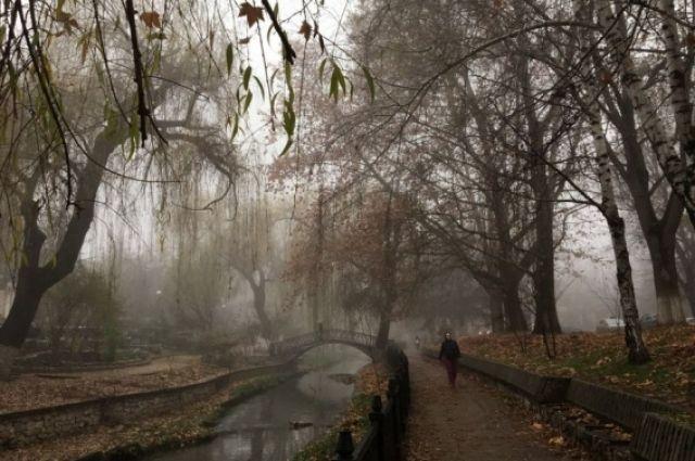 ВТатарстане синоптики прогнозируют туман инебольшой снег