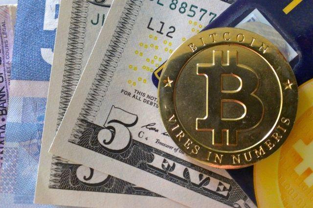 В полиции рассказали о случаях мошенничества с криптовалютами в Украине