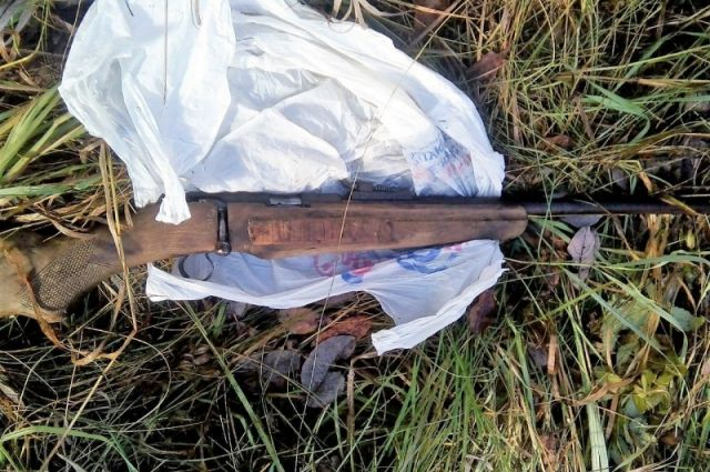 В октябре 2017 года браконьер убил в заказнике лося.