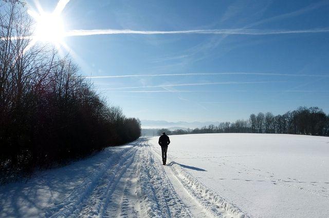 Метеорологи считают, что февраль будет снежным.