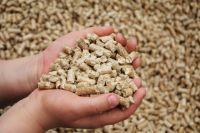 Для обеспечения животных сбалансированным по аминокислотному составу кормлением необходимо знать содержание аминокислот в кормах.