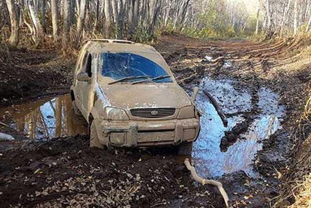 Автомобиль с собаками внутри был найден в октябре.