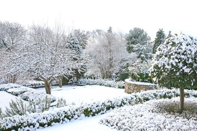 Нужен ли уход плодовому саду зимой?