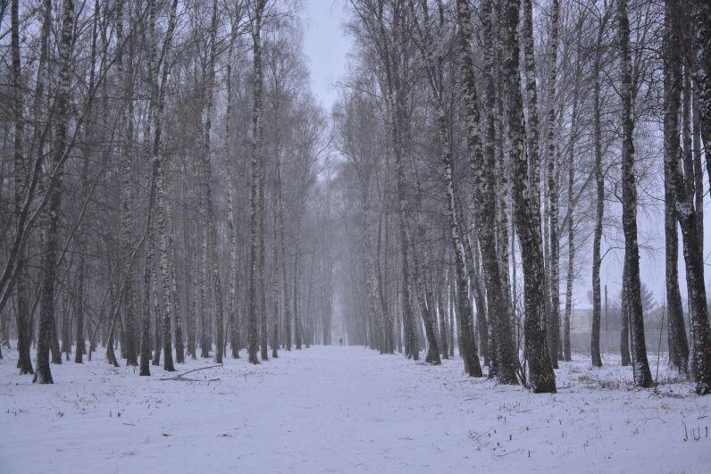 Центральный парк культуры и отдыха имени П. П. Белоусова