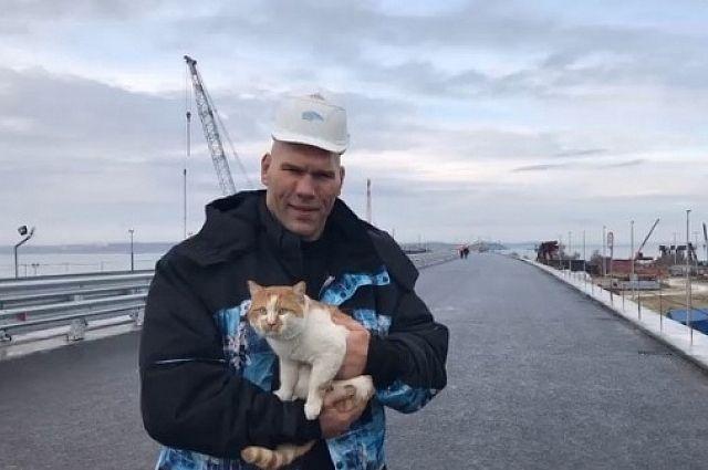 Николай Валуев проехал по Крымскому мосту с котом
