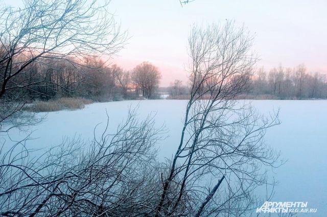 Ученые БФУ прогнозируют «минуса» в Калининграде до середины марта.