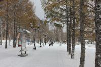 Предприниматели смогут арендовать землю в омских парках.