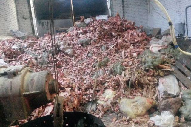 Завод по производству мясокостной муки.