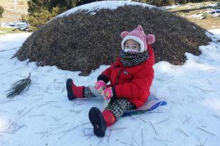 Могут ли родители не отправлять детей в школу в морозы?