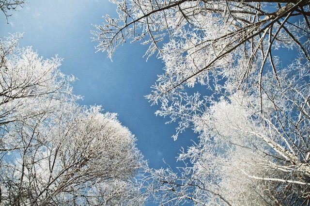 В регион пришли аномальные морозы.