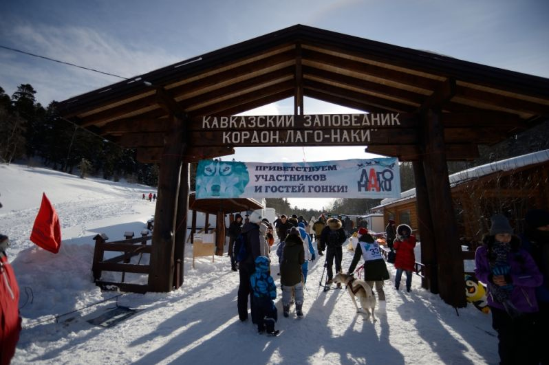Гонка стартовала на Лагонакском нагорье в Кавказском биосферном заповеднике.