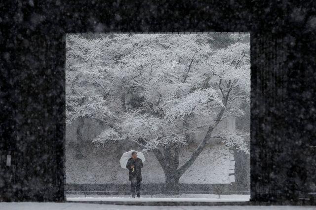 Японские владельцы автомобилей провели ночь втоннеле под Токио из-за рекордного снегопада