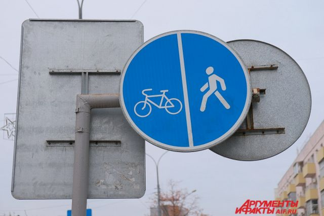Велодорожки отТипанова доцентра Петербурга спроектируют за17 млн руб.