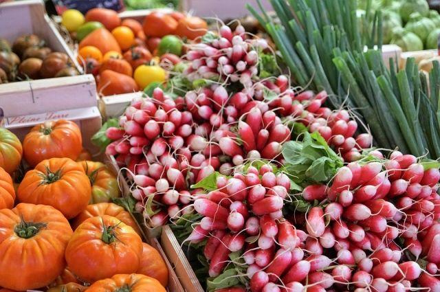 ВЛипецкой области вырастили 37,6 тысячи тонн тепличных овощей