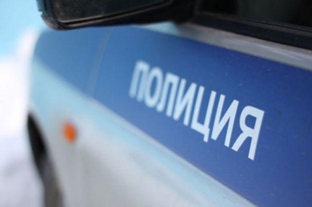 В столице полицейская машина столкнулась спенсионеркой насобачьей упряжке