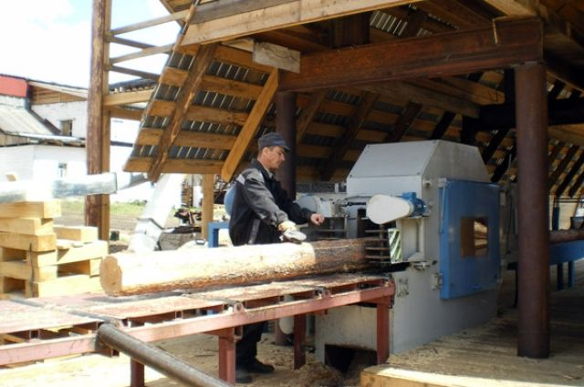 В Тюменской области создадут еще одно деревообрабатывающее производство