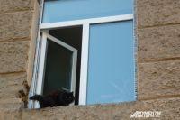Ребёнок открывал и закрывал окно в квартире на восьмом этаже.