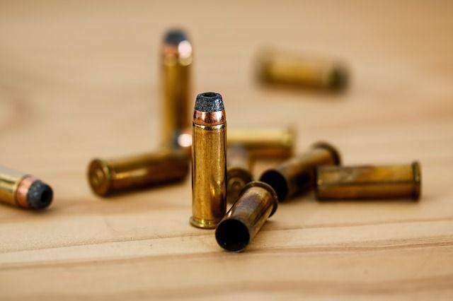 Всего было обнаружено 40 патронов.