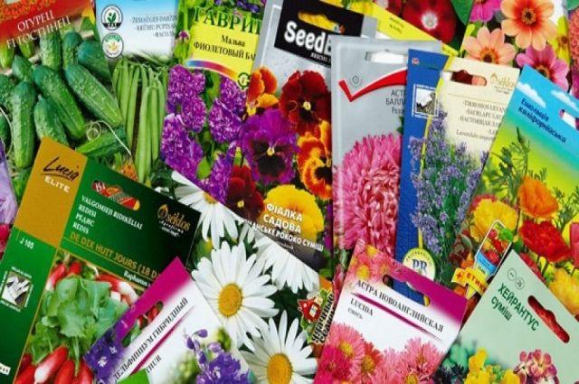 Как тюменцам выбрать качественные семена